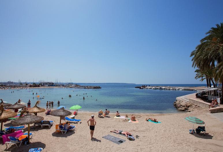 JS Palma Stay - Adults Only, Playa de Palma, Rand
