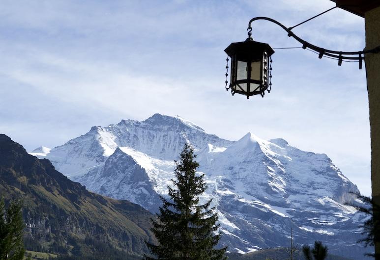 Hotel Belvedere, Wengen, Pokoj Superior s dvojlůžkem, výhled na hory (Jungfrau), Pokoj