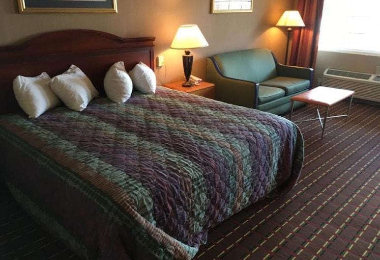 艾肯飯店, 艾肯, 客房, 1 間臥室, 客房