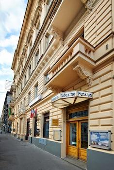 Foto Pension Brezina Prague di Prague