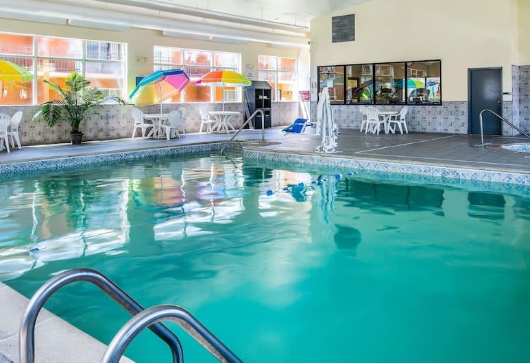 Quality Inn & Suites Ann Arbor Hwy 23, Ann Arbor, Uima-allas