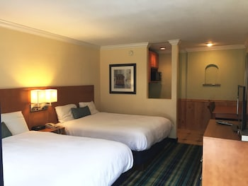 在旧金山的冲浪汽车旅馆照片