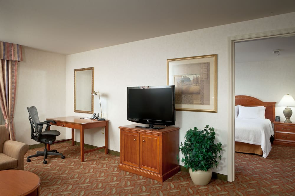 Suite, Accessible - Living Area