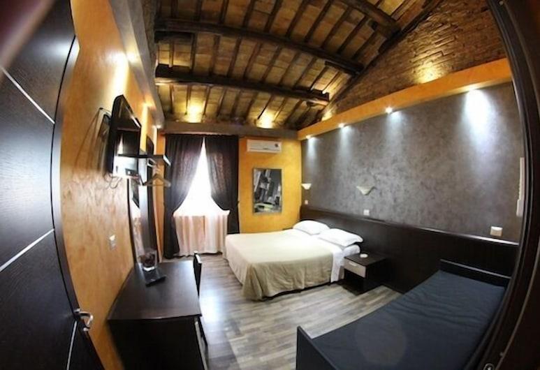 Domus Roma, Roma, Doppia Standard, Camera