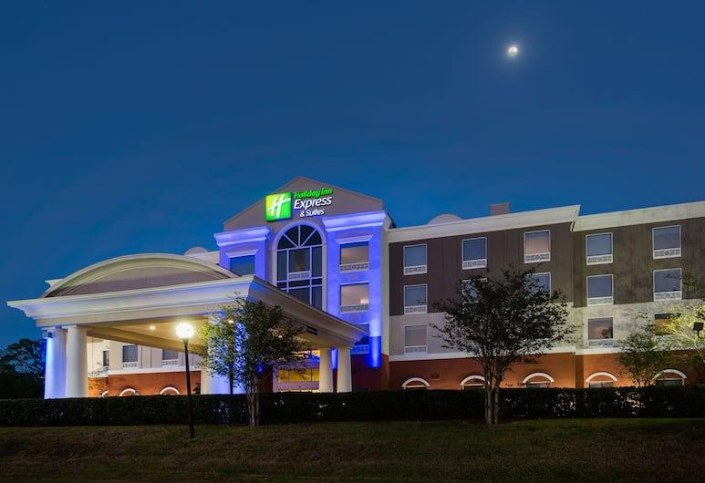 Holiday Inn Express Hotel & Suites Tampa-Fairgrounds-Casino, Tampa, Ārpuse