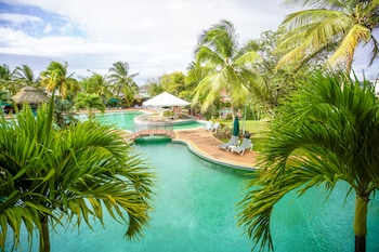 Picture of Coco Palm in Gros Islet
