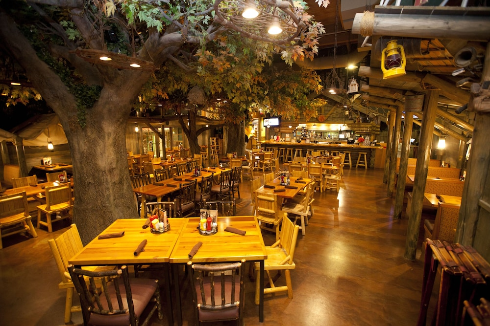 K C Coyote Cafe Guntersville Book Great Wolf Lodge ...