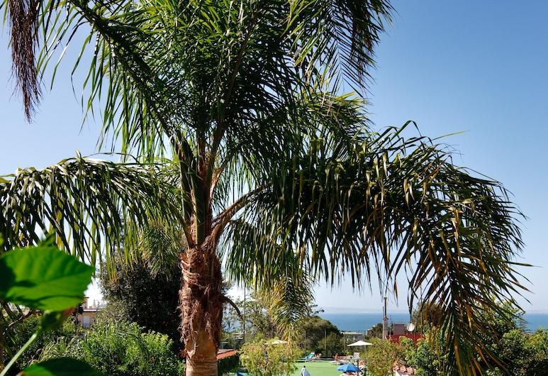 コンフォート ホテル ガーデニア ソレント コースト, ソレント, 屋外プール