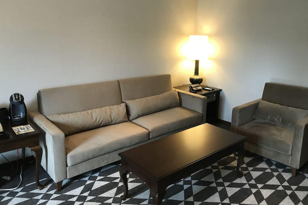 Suite ejecutiva, no fumadores (5F       ) - Zona de estar