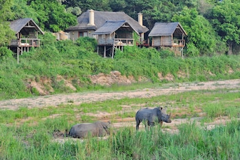 Picture of Jock Safari Lodge in Kruger National Park