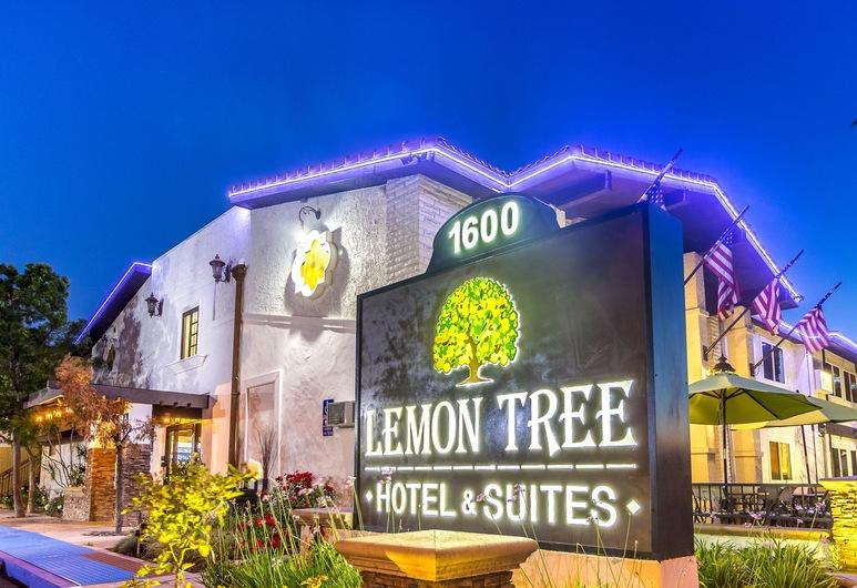 Lemon Tree Hotel & Suites Anaheim, Anaheim, Facciata hotel (sera/notte)