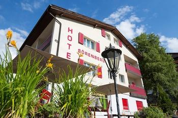 Picture of Hotel Sörenberg in Fluehli