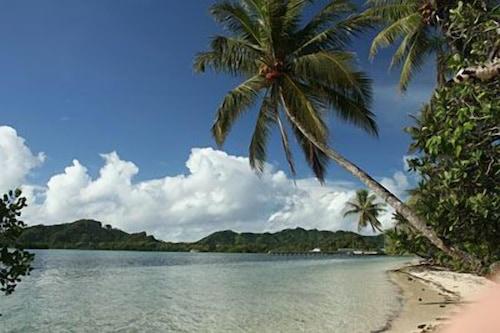 科斯雷鸚鵡螺渡假村/