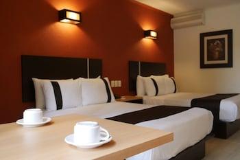 克雷塔羅米納斯傳統皇家酒店的圖片