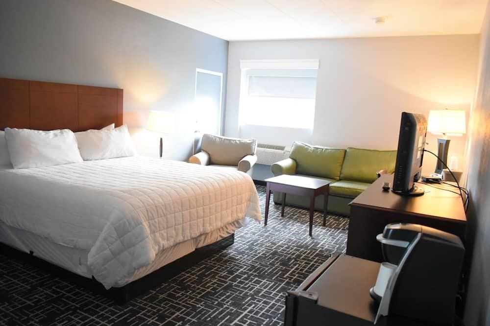 Phòng, 1 giường cỡ king và sofa giường, Không hút thuốc (Large, No Elevator Access) - Phòng