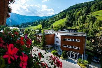 Image de Hotel Der Waldhof à Zell am See