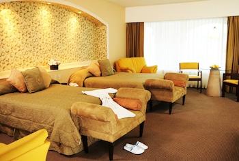 Фото Hotel Baruk Teleferico y Mina у місті Закатекас