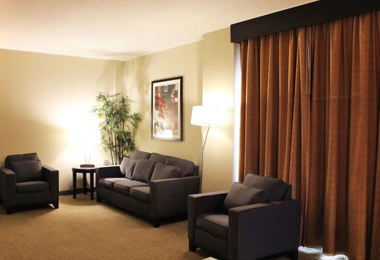 Embassy Suites Laredo, Laredo, Suite, accessibile ai disabili, non fumatori, Camera