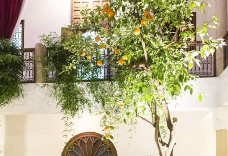 Riad El Zohar, Marrakech, Pomieszczenie śniadaniowe