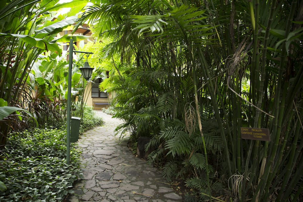 Standardrum - utsikt mot trädgården - Utsikt mot trädgården