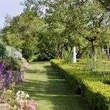 Numeris, 1 viengulė lova, terasa, sodas - Vaizdas į sodą