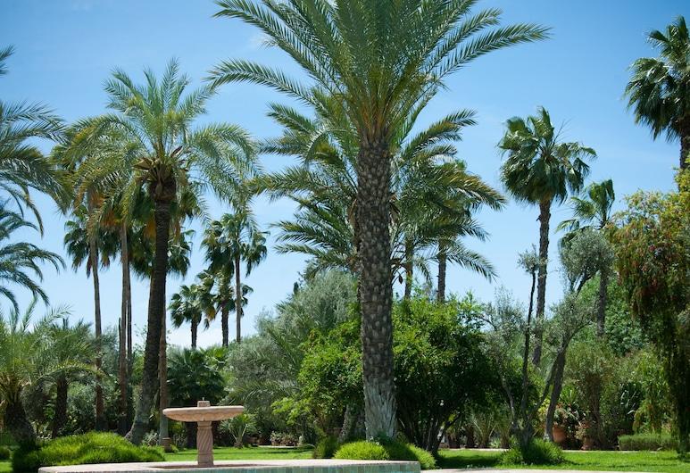 Dar Ayniwen Garden Hotel & Bird Zoo, Marrakesch, Außenpool