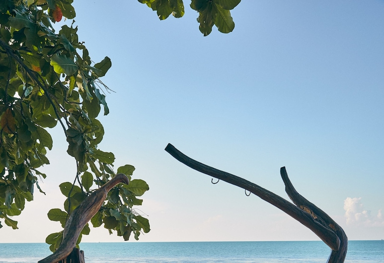 天然翼療養 SPA 及度假村, 蘇梅島, 酒店酒吧