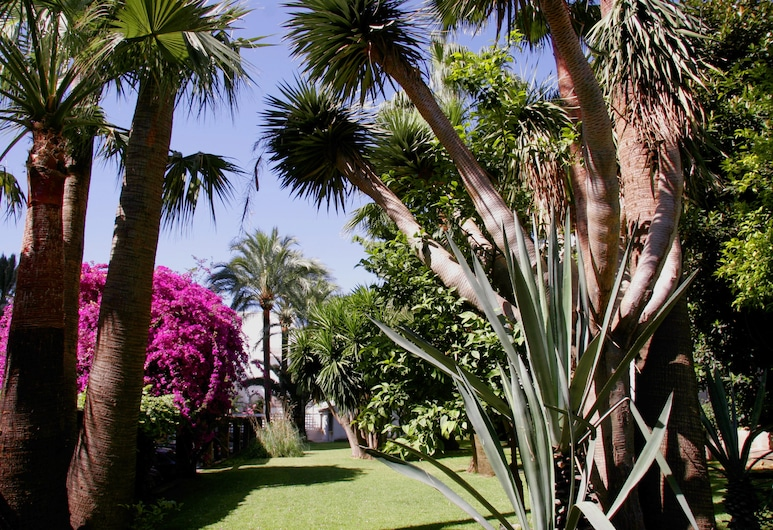 Hotel Apartamentos Bajondillo, Torremolinos, Garden
