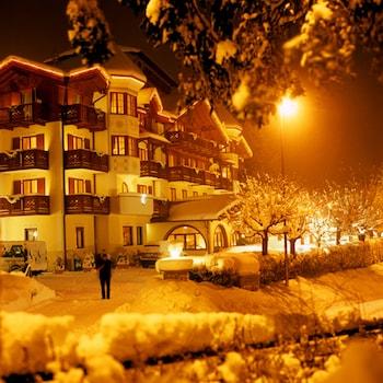 Picture of Du Lac Vital Mountain Hotel in Molveno