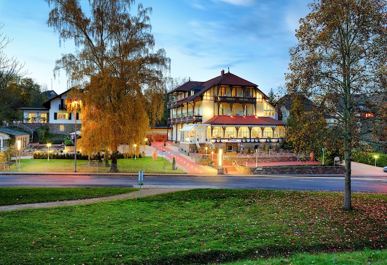 Park Hotel Bad Salzig, Boppard