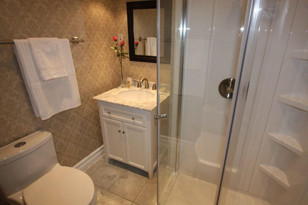 Luksuzna soba, 1 queen size krevet, s kupaonicom - Kupaonica