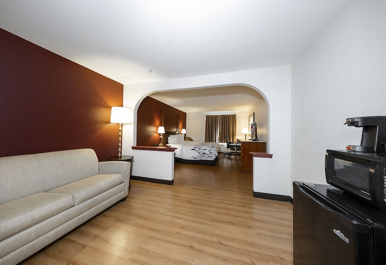 Red Roof Inn & Suites Biloxi, Biloxi, Rom – superior, 1 kingsize-seng, røyk, Gjesterom