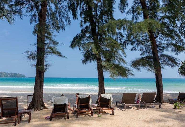 썬윙 방타오 비치, Choeng Thale, 해변
