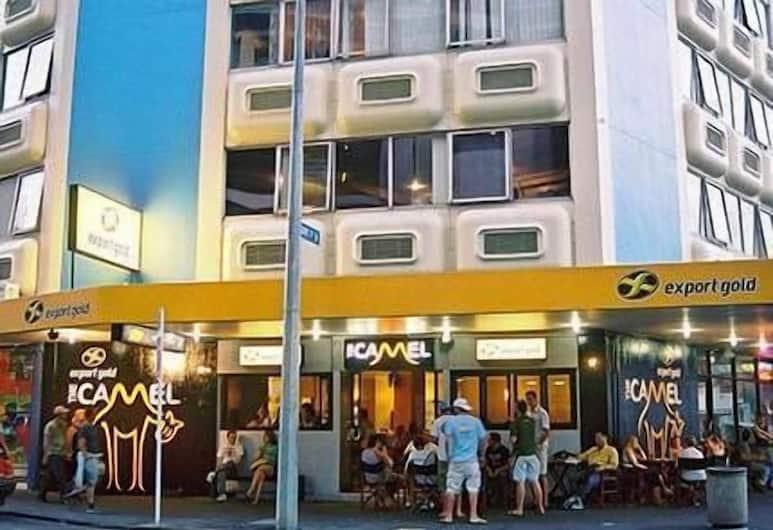 Fat Camel Hostel & Bar, Auckland