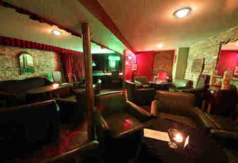 Old Chicago Inn, Chicago, Hotel Bar