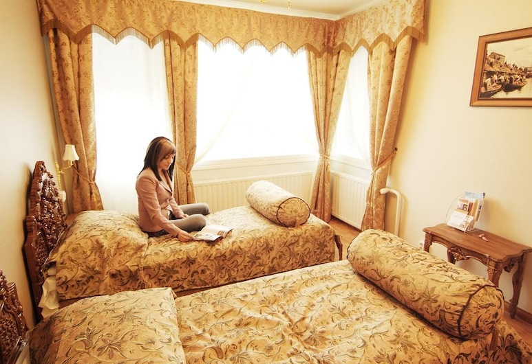 Mango Hotel, Tamperė, Standartinio tipo kambarys, 2 viengulės lovos, Svečių kambarys