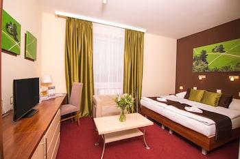 Picture of Hotel Color in Bratislava
