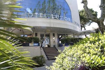 Picture of Hotel Luxor in Rimini