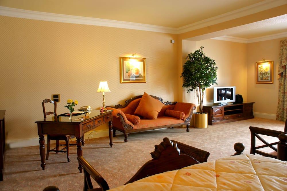 Executive Süit (Double Room) - Oturma Odası
