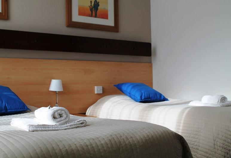 Ashley Hotel, Cork, Standardní pokoj s dvojlůžkem, nekuřácký, výhled na město, Pokoj