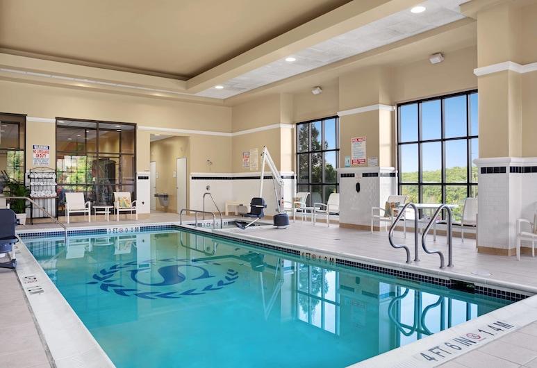 Sheraton Baltimore Washington Airport Hotel - BWI, Linthicum Heights, Piscina coperta