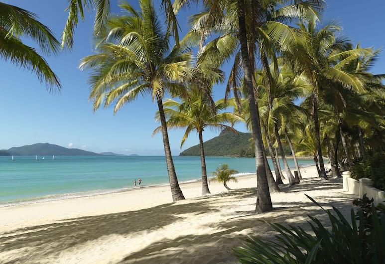 Palm Bungalows, Hamilton Island, Beach