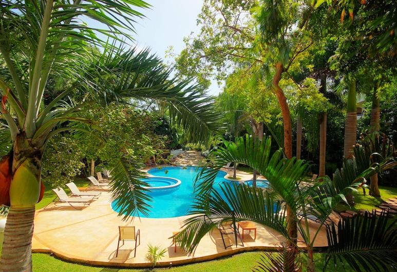Riviera Maya Suites, Plaja del Karmena, Naktsmītnes teritorija