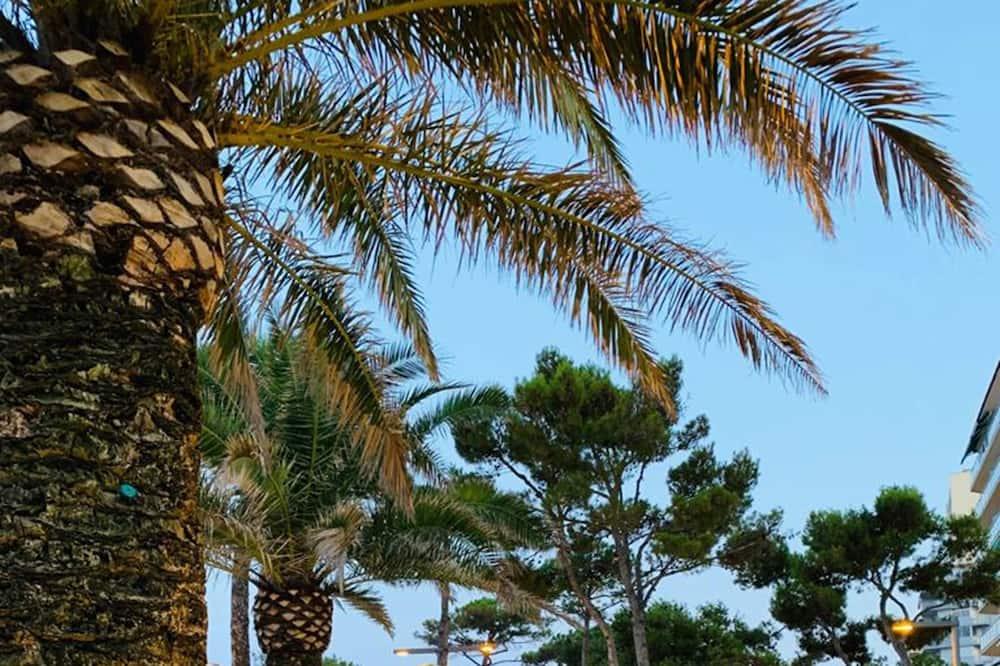 Bar sur la plage