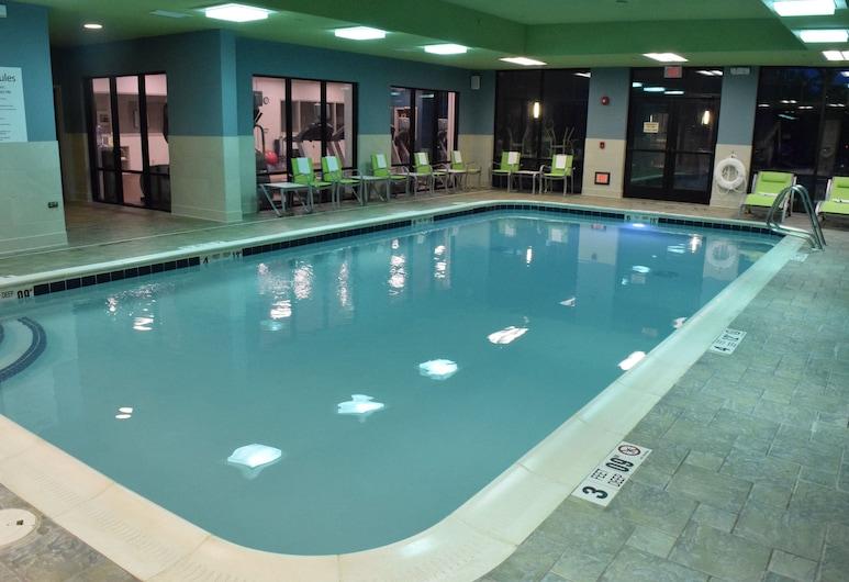Holiday Inn Express & Suites Rochester Webster, Webster, Baseinas