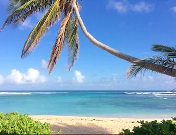 Foto van The Palms at Pelican Cove - Adults Only in Christiansted