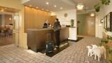 Singen Hotels,Deutschland,Unterkunft,Reservierung für Singen Hotel