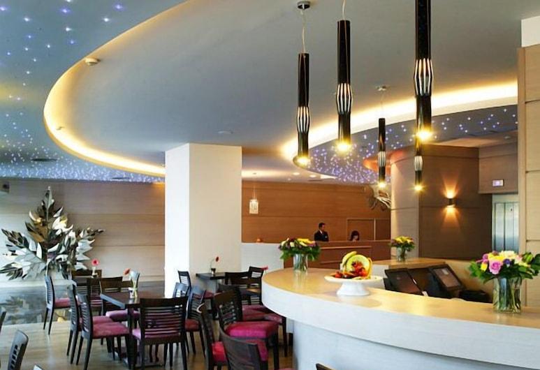Amalia Hotel Athens, Aten, Hotellbar