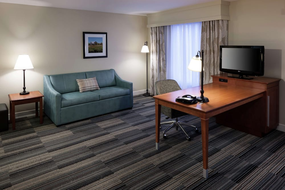 Suite, 1 King Bed, Accessible, Non Smoking - Guest Room