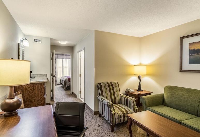 Comfort Inn & Suites, Dover, Guest Room